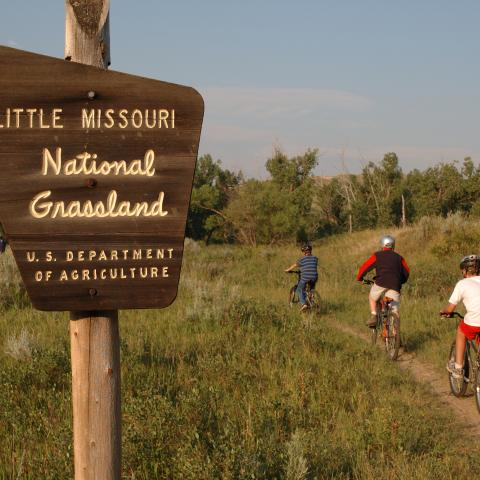 Little Missouri National Grasslands