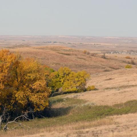 Cedar River National Grasslands