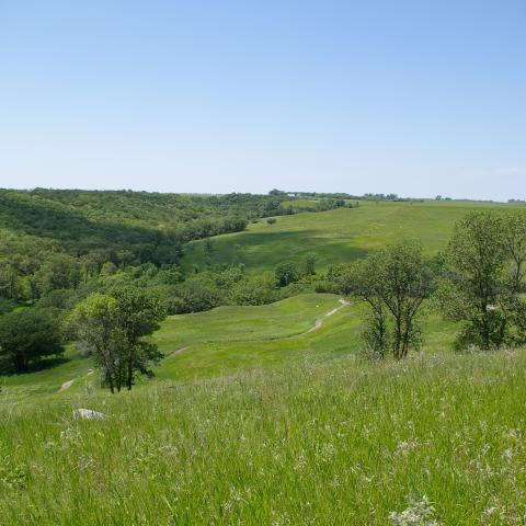Sheyenne National Grasslands